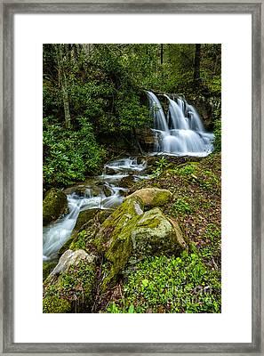 Waterfall Along Back Fork Of Elk River Framed Print by Thomas R Fletcher