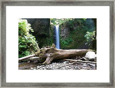 Waterfall And A Log Framed Print by Jeff Swan