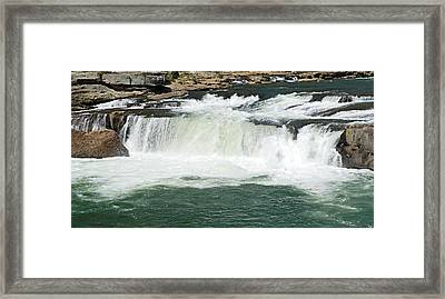 Waterfall At Ohiopyle State Park Framed Print by Larry Ricker