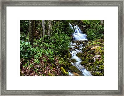 Waterfall Back Fork Of Elk River Framed Print by Thomas R Fletcher