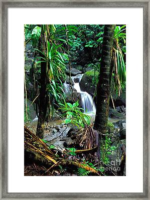 Waterfall El Yunque National Forest Mirror Image Framed Print by Thomas R Fletcher