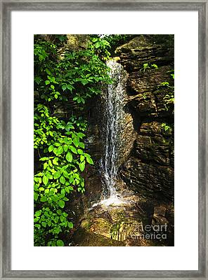 Waterfall In Forest Framed Print by Elena Elisseeva