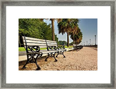 Waterfront Park Bench  Framed Print by Drew Castelhano