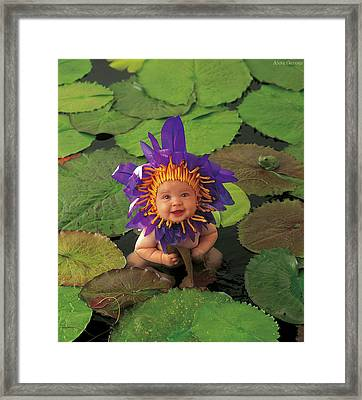 Waterlily Framed Print by Anne Geddes