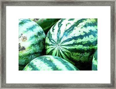 Watermelon Love Framed Print by Teri Virbickis