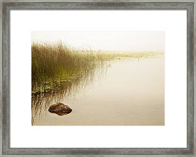 Waterscape Framed Print by Barbara Smith