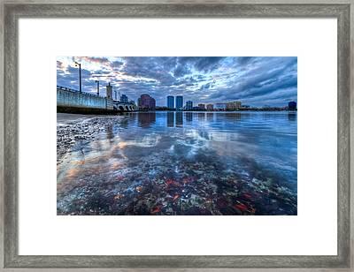 Watery Treasure Framed Print by Debra and Dave Vanderlaan