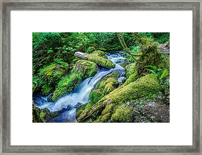 Watson Creek Falls Oregon Framed Print by Scott McGuire