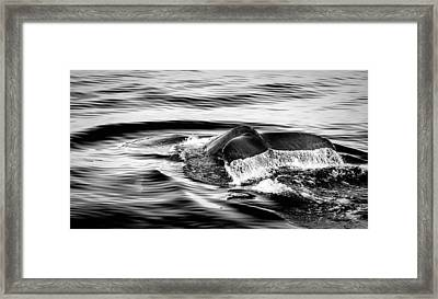 Wave Good Bye Framed Print by Alexey Stiop