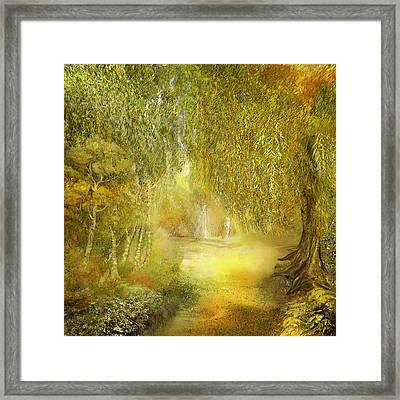 Way Of Thoughts Framed Print by Anne Weirich