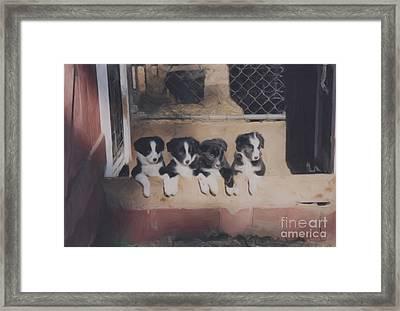 Way Too Cute Framed Print by Smilin Eyes  Treasures