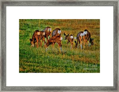 We Bow Our Heads With The Loss Of Bambi Framed Print by Blake Richards