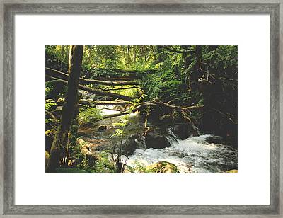We Were Young And Wild And Free Framed Print by Laurie Search
