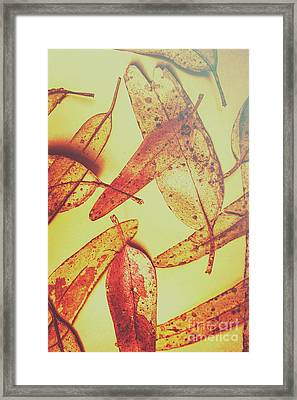 Weathered Autumn Leaves Framed Print by Jorgo Photography - Wall Art Gallery
