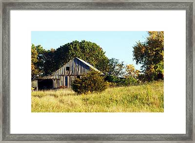 Weathered Barn In Fall Framed Print by Cricket Hackmann