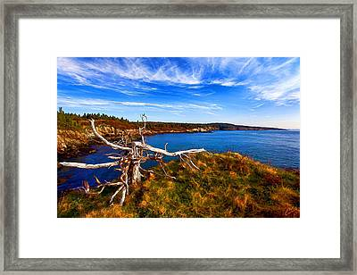 Weathered Coast Framed Print by Bill Caldwell -        ABeautifulSky Photography