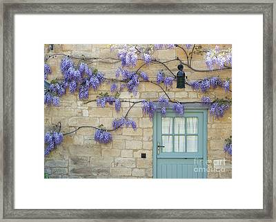 Weaving Wisteria Framed Print by Tim Gainey