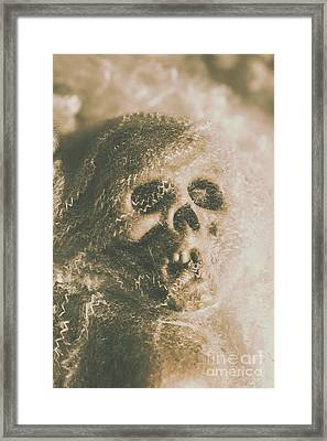 Webs And Dead Heads Framed Print by Jorgo Photography - Wall Art Gallery