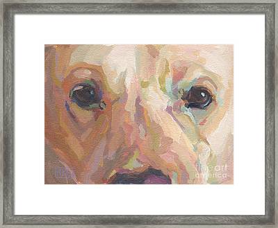 Webster Framed Print by Kimberly Santini