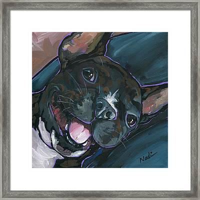 Webster Framed Print by Nadi Spencer