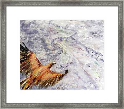 Wedgetail Eagle Over The Landscape Framed Print by Huth Anne