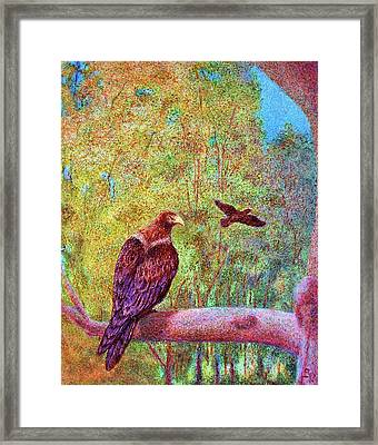 Wedgetail Eagles Framed Print by Huth Anne