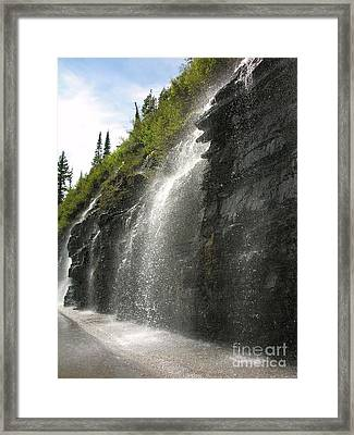 Weeping Wall Framed Print by Diane Greco-Lesser