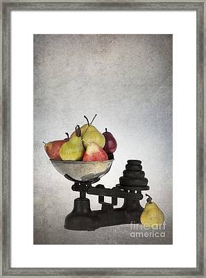 Weighing Pears Framed Print by Jane Rix