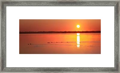 Welcome To My Morning Framed Print by Karen Wiles