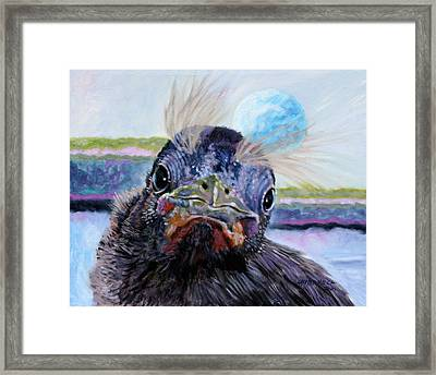 Welcome To The World Framed Print by John Lautermilch