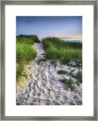 Wellfleet Beach Path Framed Print by Tammy Wetzel