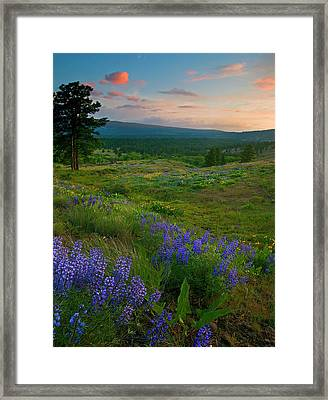 Wenas Valley Sunset Framed Print by Mike  Dawson