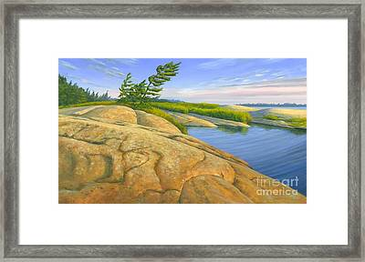 Wind Swept Framed Print by Michael Swanson