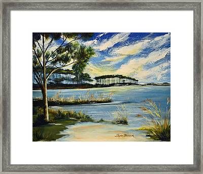 Western Lake 30a Framed Print by Stephen Broussard