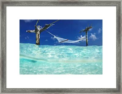 Wet Hammock Framed Print by Sean Davey