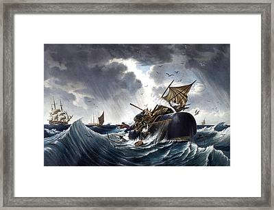 Whale Destroying Whaling Ship Framed Print by American School