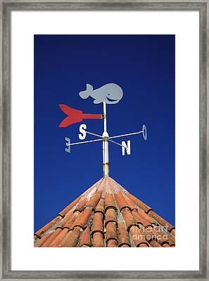 Whale Weather Vane Framed Print by Gaspar Avila