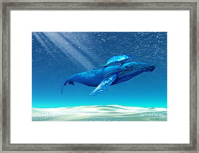 Whales Framed Print by Corey Ford