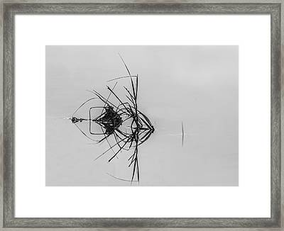 What Do You See Framed Print by Marvin Spates
