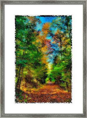 What Dreams May Come 3 Framed Print by David Patterson