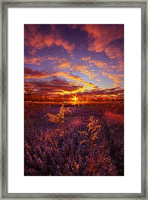 What Forever Means Framed Print by Phil Koch