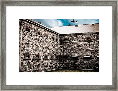 What Freedom Means Framed Print by Kelly Jade King