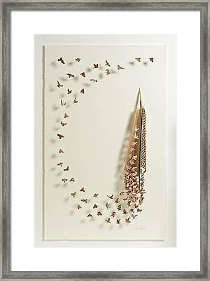 What Happens When You Tip A Feather Upside Down Framed Print by Chris Maynard