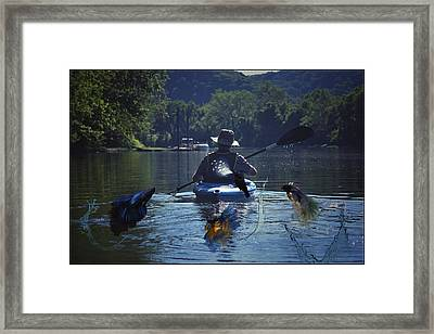 What The Fisherman Does Not See Framed Print by Shelley Smith