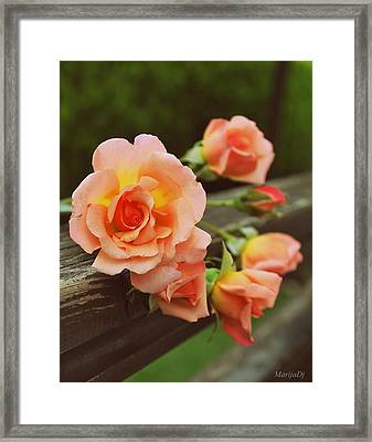 What's In A Name Framed Print by Marija Djedovic