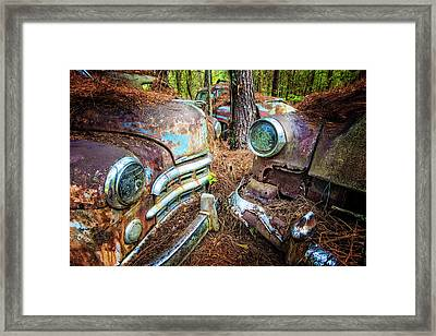 What's Up Framed Print by Debra and Dave Vanderlaan