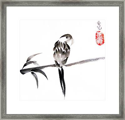 What's Up Framed Print by Oiyee At Oystudio