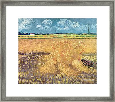 Wheatfield With Sheaves Framed Print by Vincent van Gogh