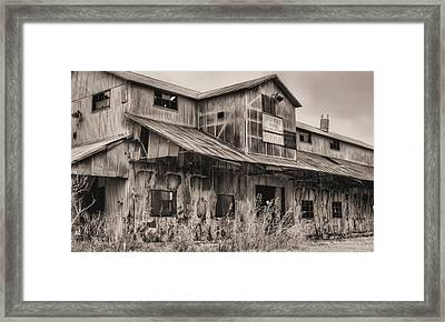 When Cotton Was King Framed Print by JC Findley