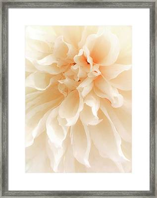 When Nature Becomes Divine Framed Print by Karen Wiles